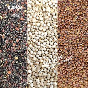 Quinoa ควินัว